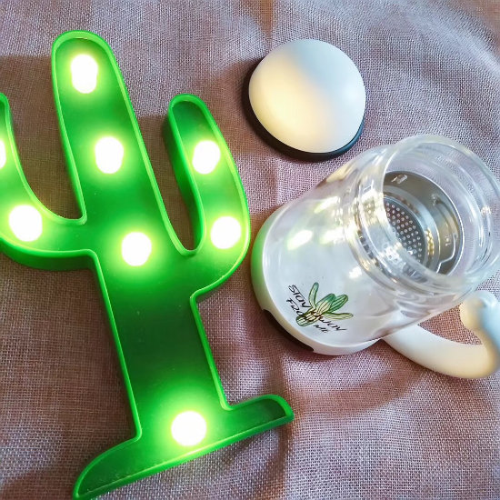 BeddyBear Double Walled Glass Insulation Mug Prints Series Cactus Design with Tea Strainer beside cactus shaped light